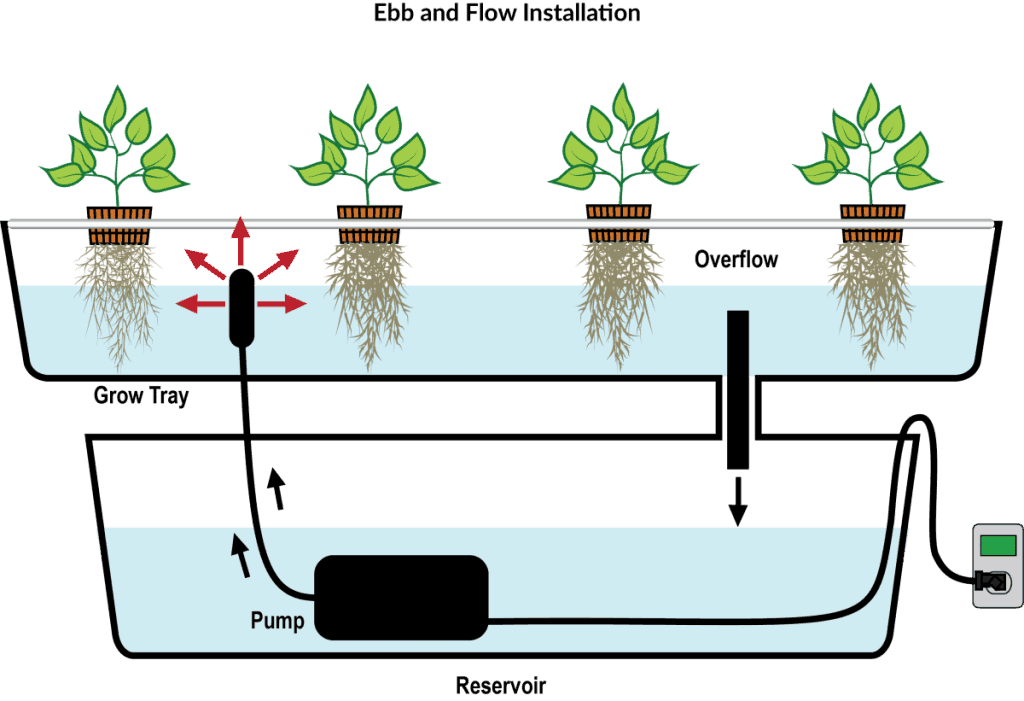 EBB and Flow VS DWC – Which System Should You Choose